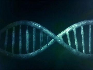 Descubiertos nuevos genes ligados al TEA